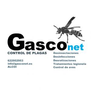 Gasc net control de plagas for Control de plagas badajoz